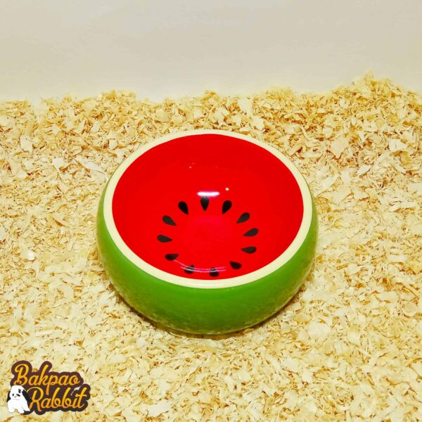 Jolly JP253 Pets Fruit Bowl Watermelon